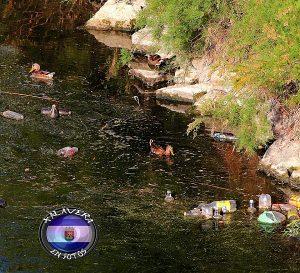 botellas rio tajo